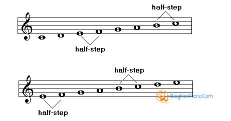 Mỗi âm giai trên có thứ tự cung và nửa cung khác nhau. Âm giai đầu tiên gọi  là âm giai trưởng, âm giai thứ hai thì thuộc điệu thức Gregorian.