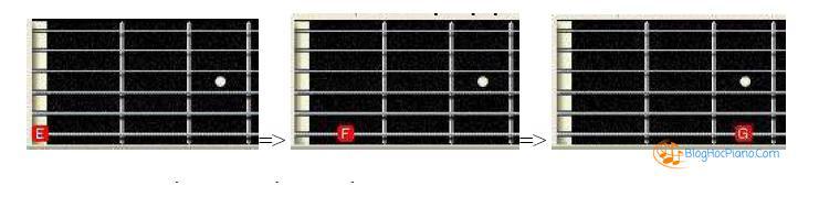 học nhạc lý cơ bản guitar