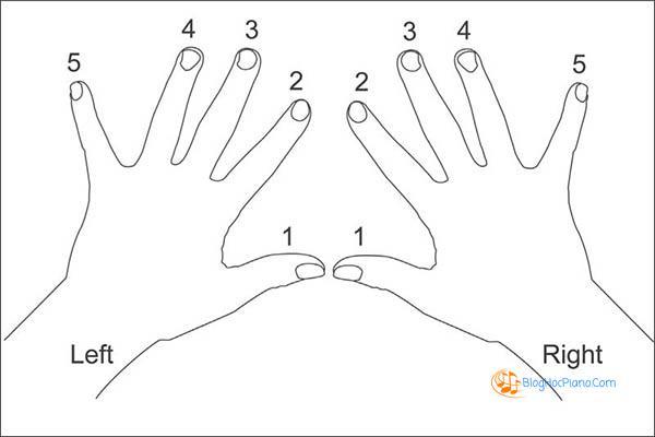 hướng dẫn học đàn piano cơ bản 6