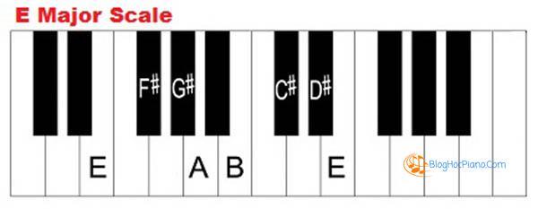 hướng dẫn học đàn piano cơ bản 8