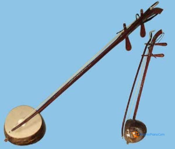 đàn gáo