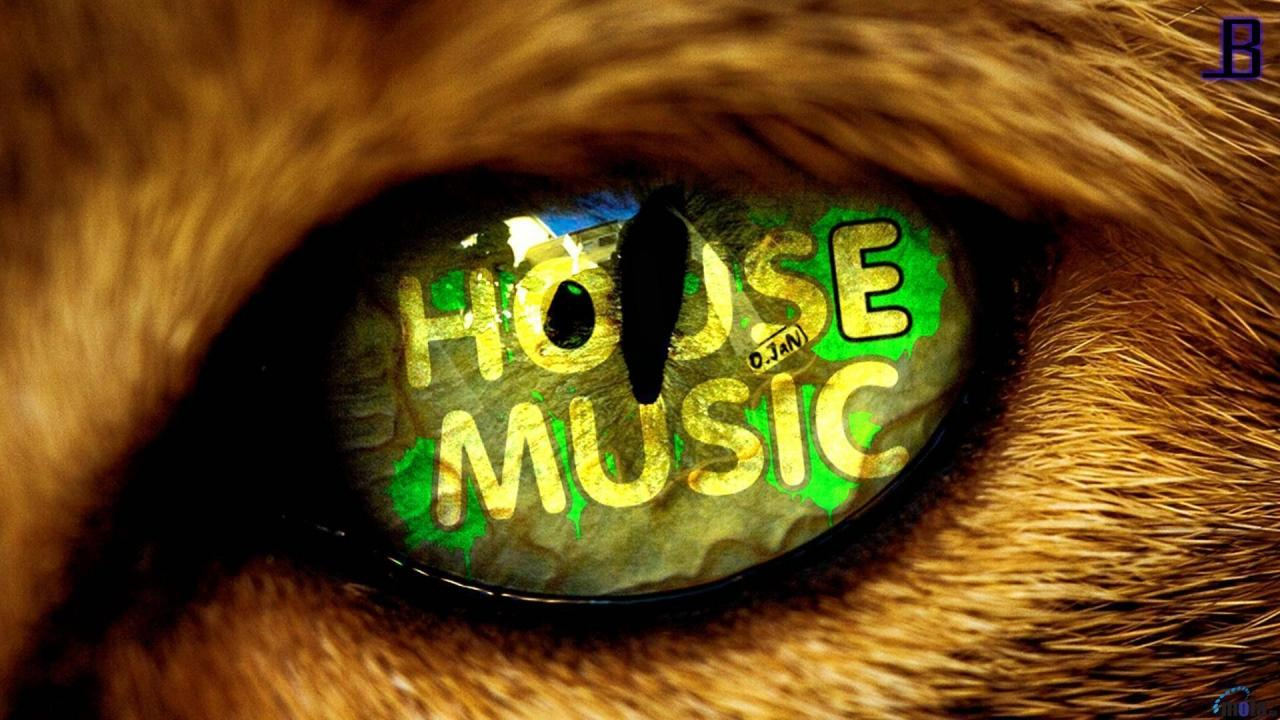 1920x1080 House Music Backgrounds - Wallpaper Cave